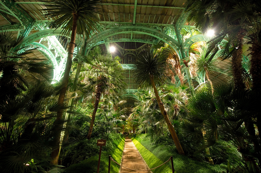 Royal Greenhouses of Laeken (7)