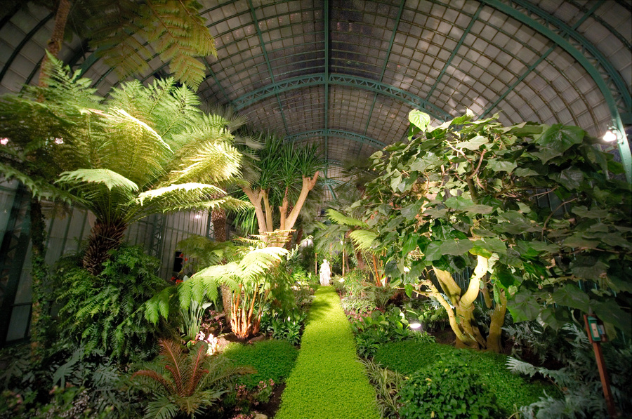 Royal Greenhouses of Laeken (8)