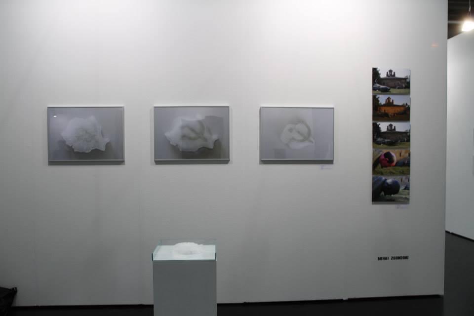 proiect 25 Galeria Atelier 030202  Viennafair 2014 (13)
