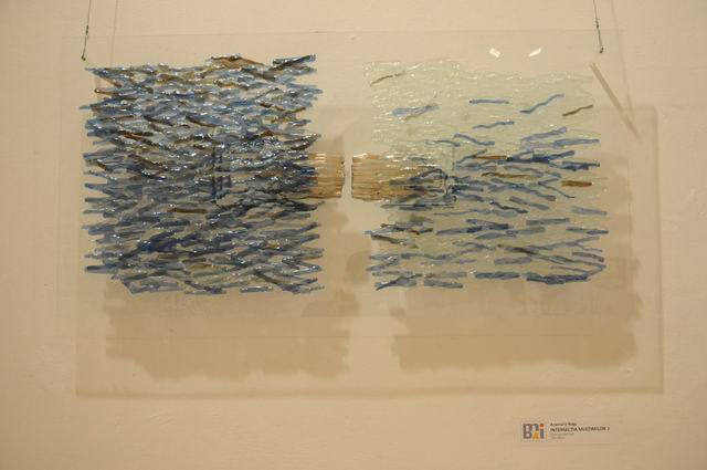 bienala ceramica sticla metal - cluj 2014 foto lucian muntean _0014