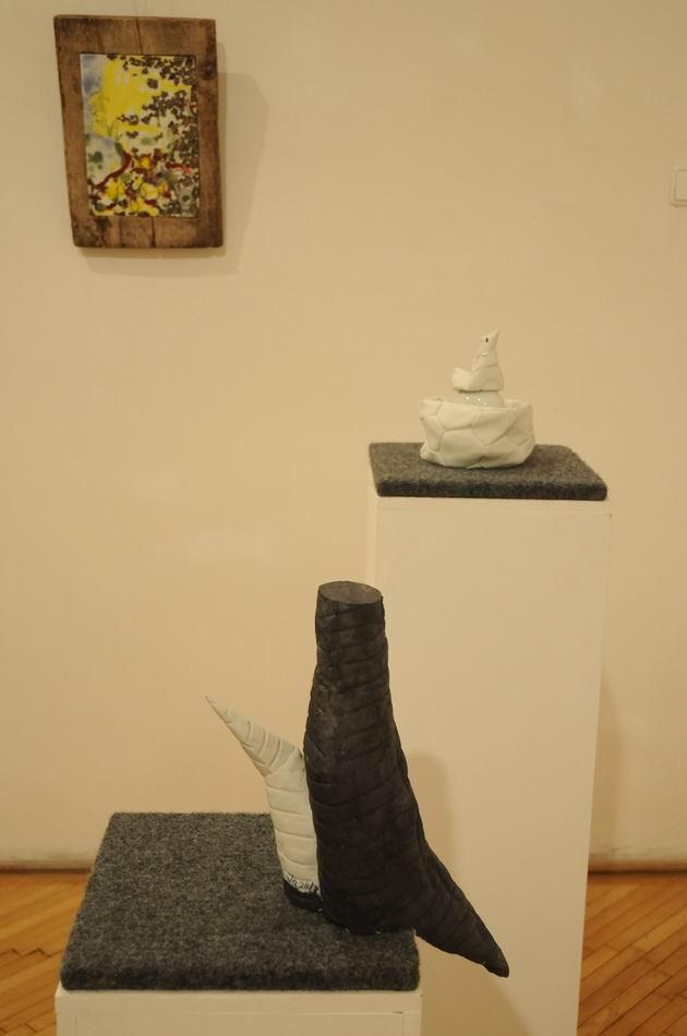 bienala ceramica sticla metal - cluj 2014 foto lucian muntean _0052