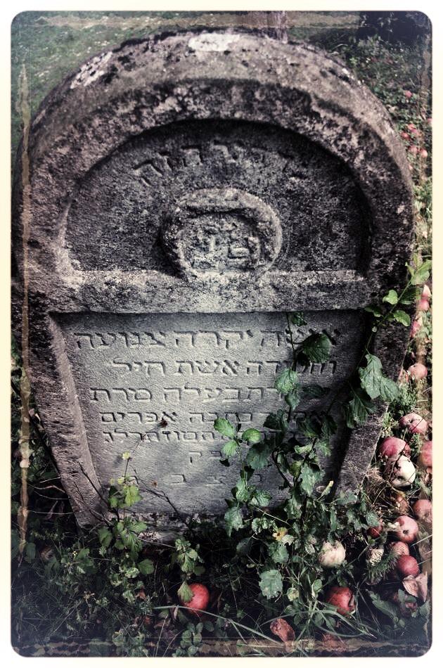 napradea - salaj cimitir evreiesc - foto lucian muntean 18