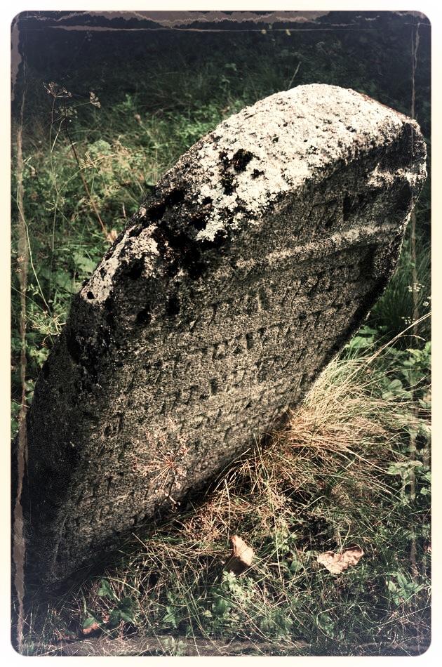 napradea - salaj cimitir evreiesc - foto lucian muntean 19