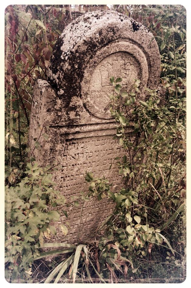 napradea - salaj cimitir evreiesc - foto lucian muntean 21