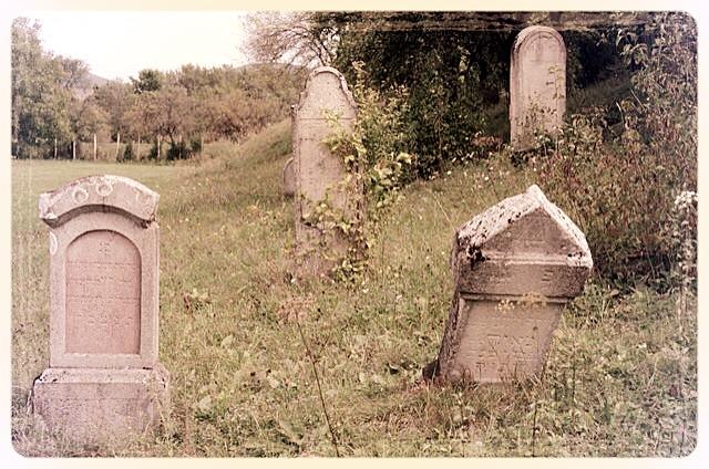 napradea - salaj cimitir evreiesc - foto lucian muntean 28