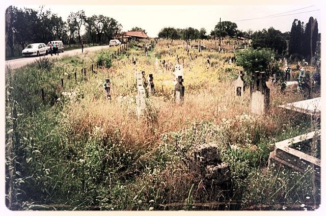 napradea - salaj cimitir - foto lucian muntean 01
