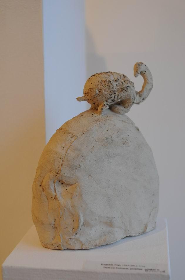 Resize of amprente - ceramica - galateea foto lucian muntean_7019