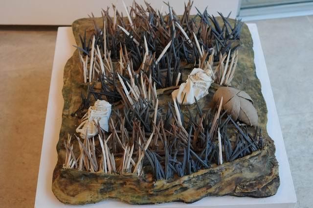 Resize of amprente - ceramica - galateea foto lucian muntean_7020