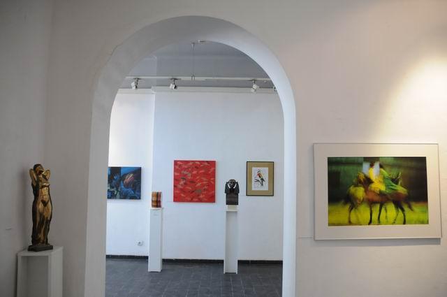 salonul de iarna 2014 - 2015 - simeza - foto Lucian Muntean 68