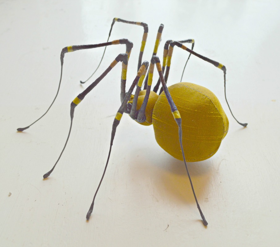 summer-spider-med