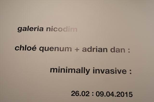 Chloé Quenum - Adrian Dan Minimally Invasive - Galeria Nicodim - foto Lucian Muntean _03