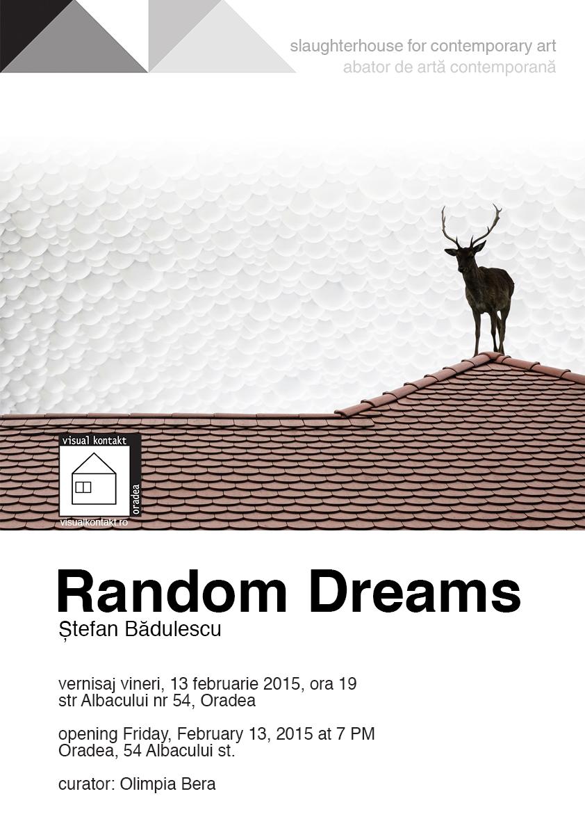 afis random dreams copy