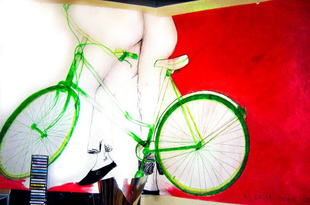 bicicleta dpi 72
