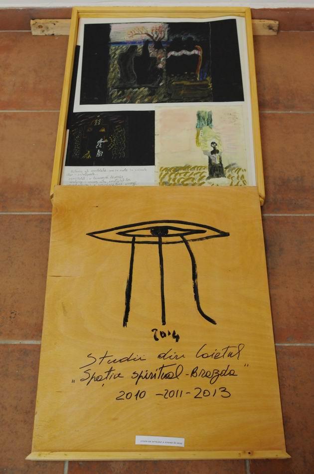 paula ribariu - brazda MTR foto lucian muntean resize_0002