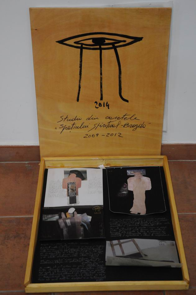 paula ribariu - brazda MTR foto lucian muntean resize_0041