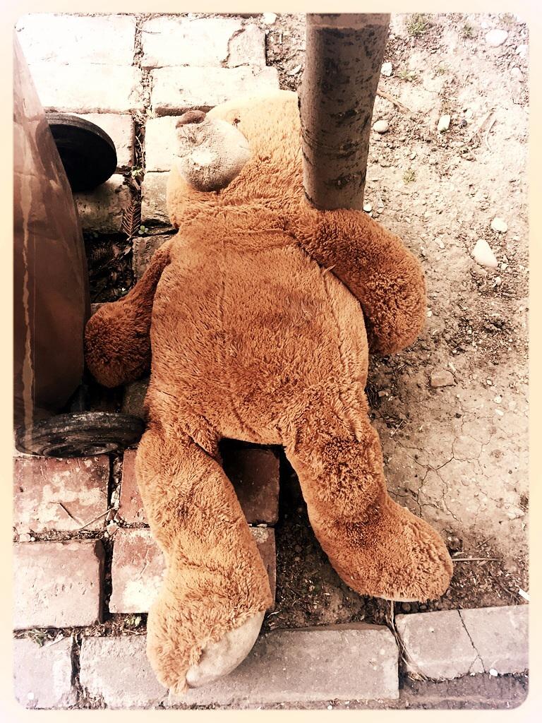 Sad Teddy Bear _LM