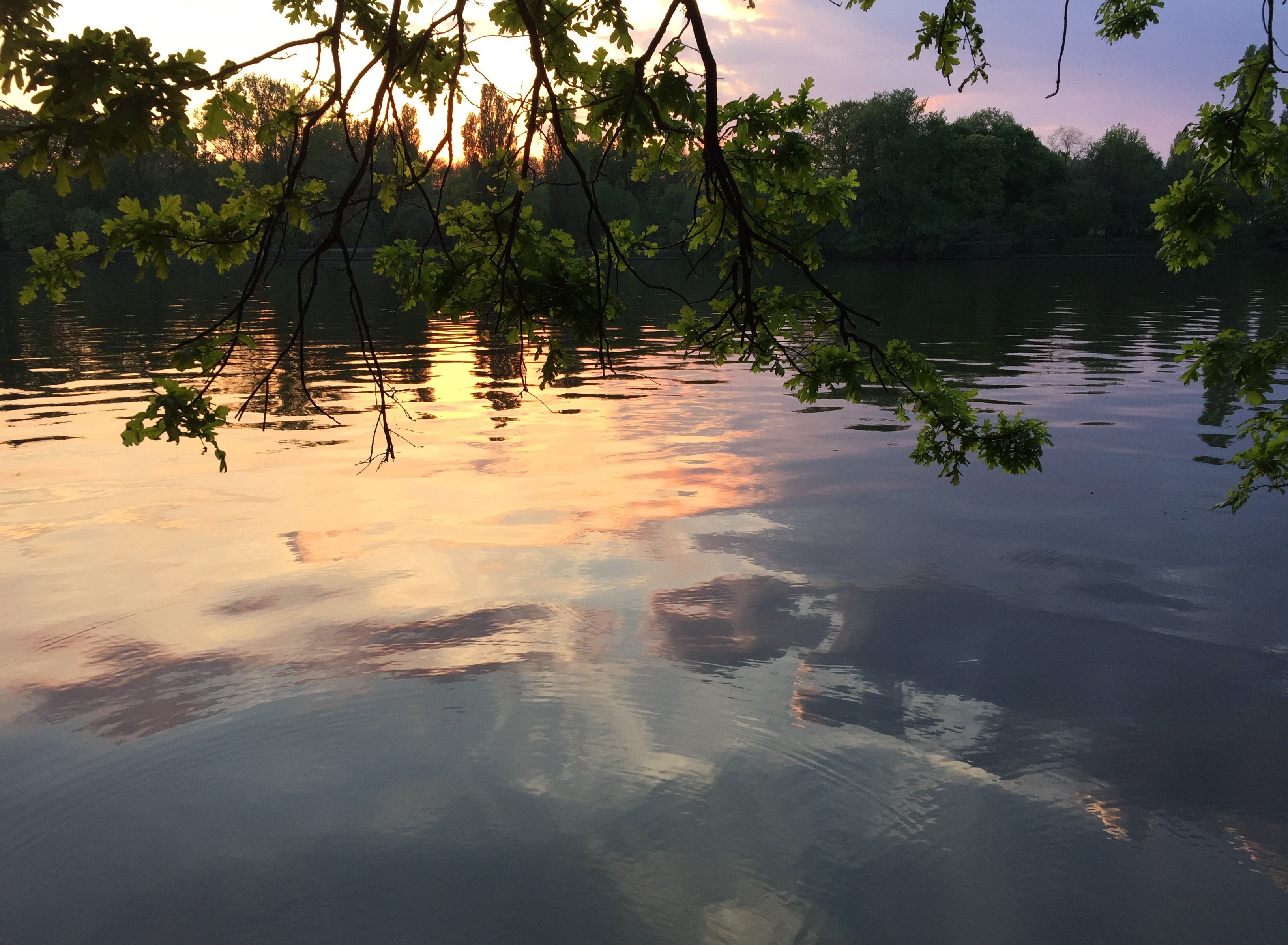 lac herastrau foto lucian muntean