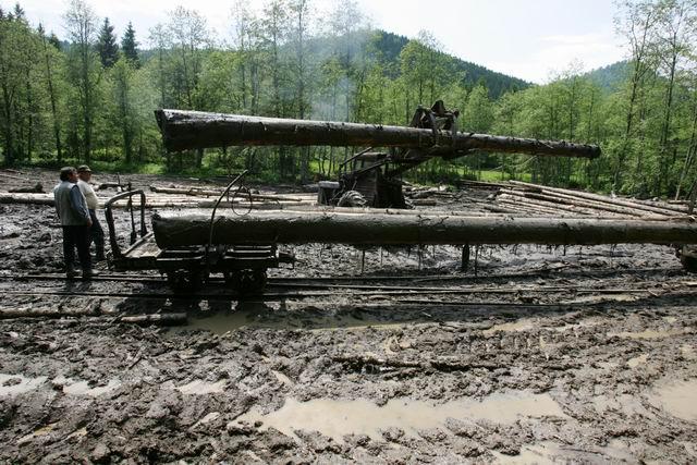 mocanita - valea vaserului - foto lucian muntean 0074