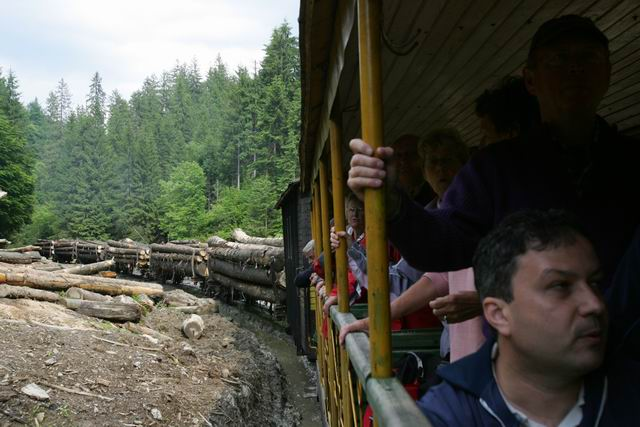 mocanita - valea vaserului - foto lucian muntean 0083
