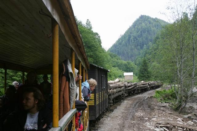 mocanita - valea vaserului - foto lucian muntean 0087