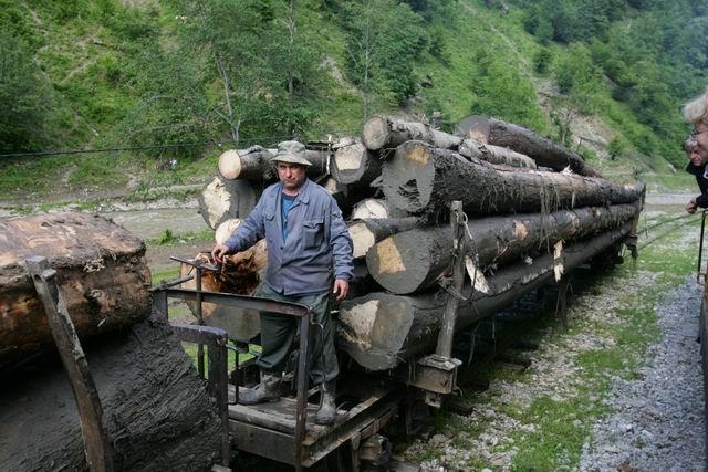 mocanita - valea vaserului - foto lucian muntean 0089