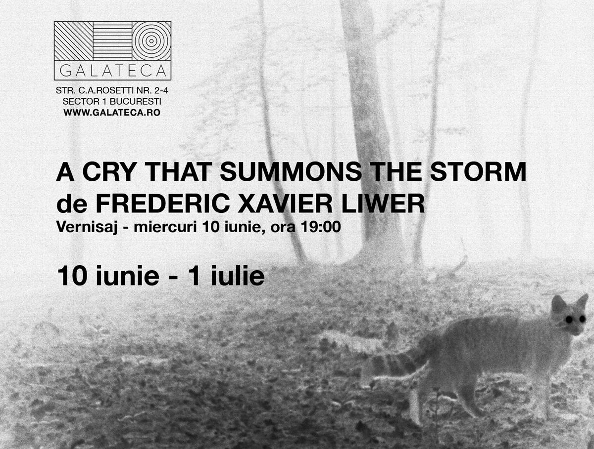 Frédéric Xavier Liwer (5)
