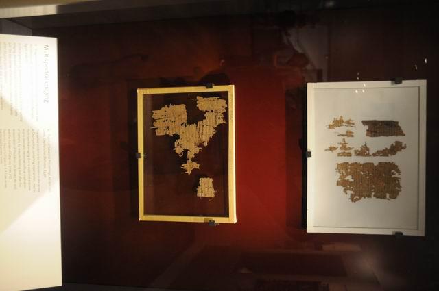 ashmolean - oxford - foto lucian muntean 09