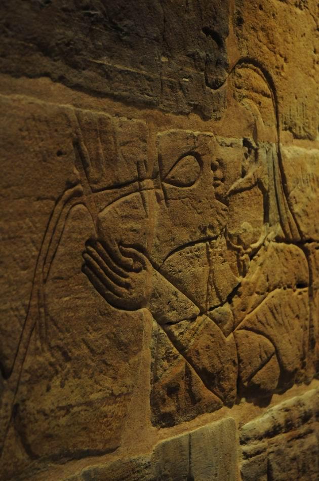 ashmolean - oxford - foto lucian muntean 51
