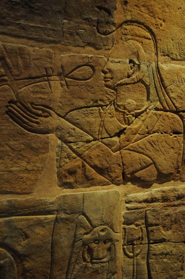 ashmolean - oxford - foto lucian muntean 53
