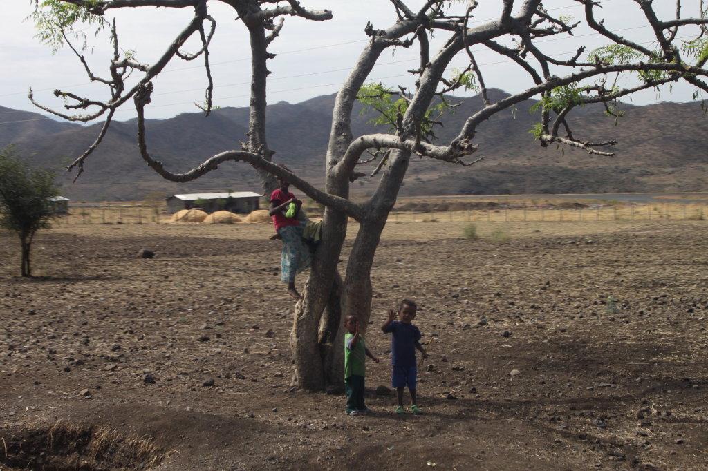 etiopia -africa - foto aurel rat 09