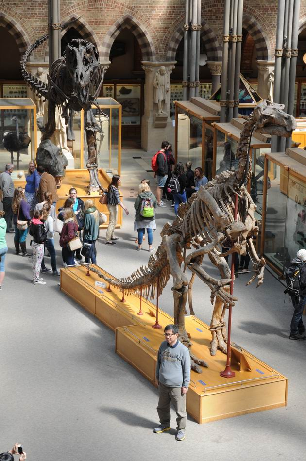 oxford university museum of natural history - photo lucian muntean _0006