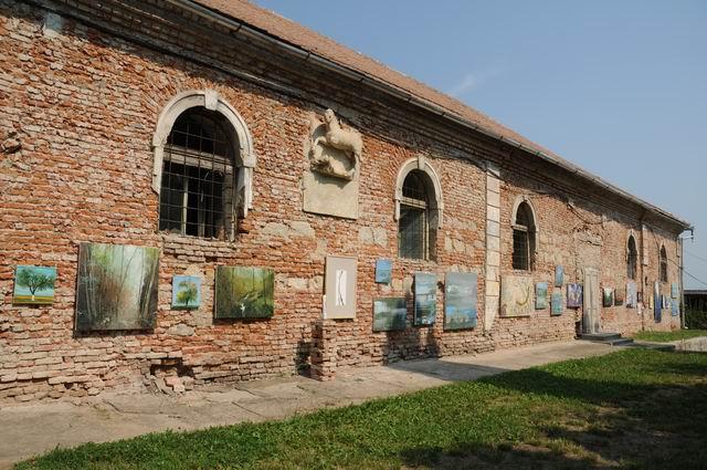 14 expozitia - vernisaj - foto Lucian Muntean _0002