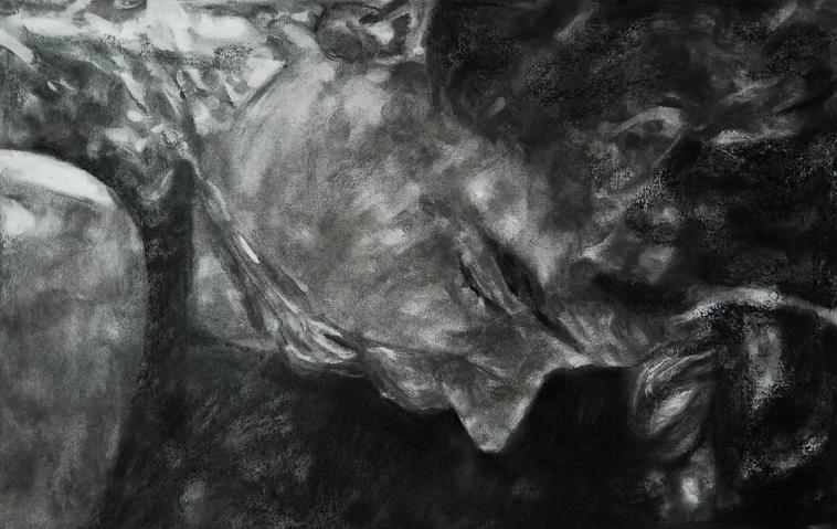 Ada Muntean – solo show Black Fire @ Muzeul de Artă Brasov (24)
