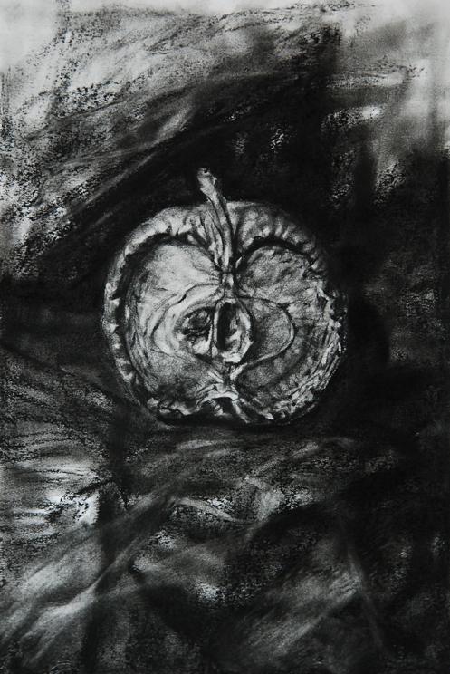 Ada Muntean – solo show Black Fire @ Muzeul de Artă Brasov (26)