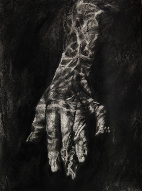 Ada Muntean – solo show Black Fire @ Muzeul de Artă Brasov (39)
