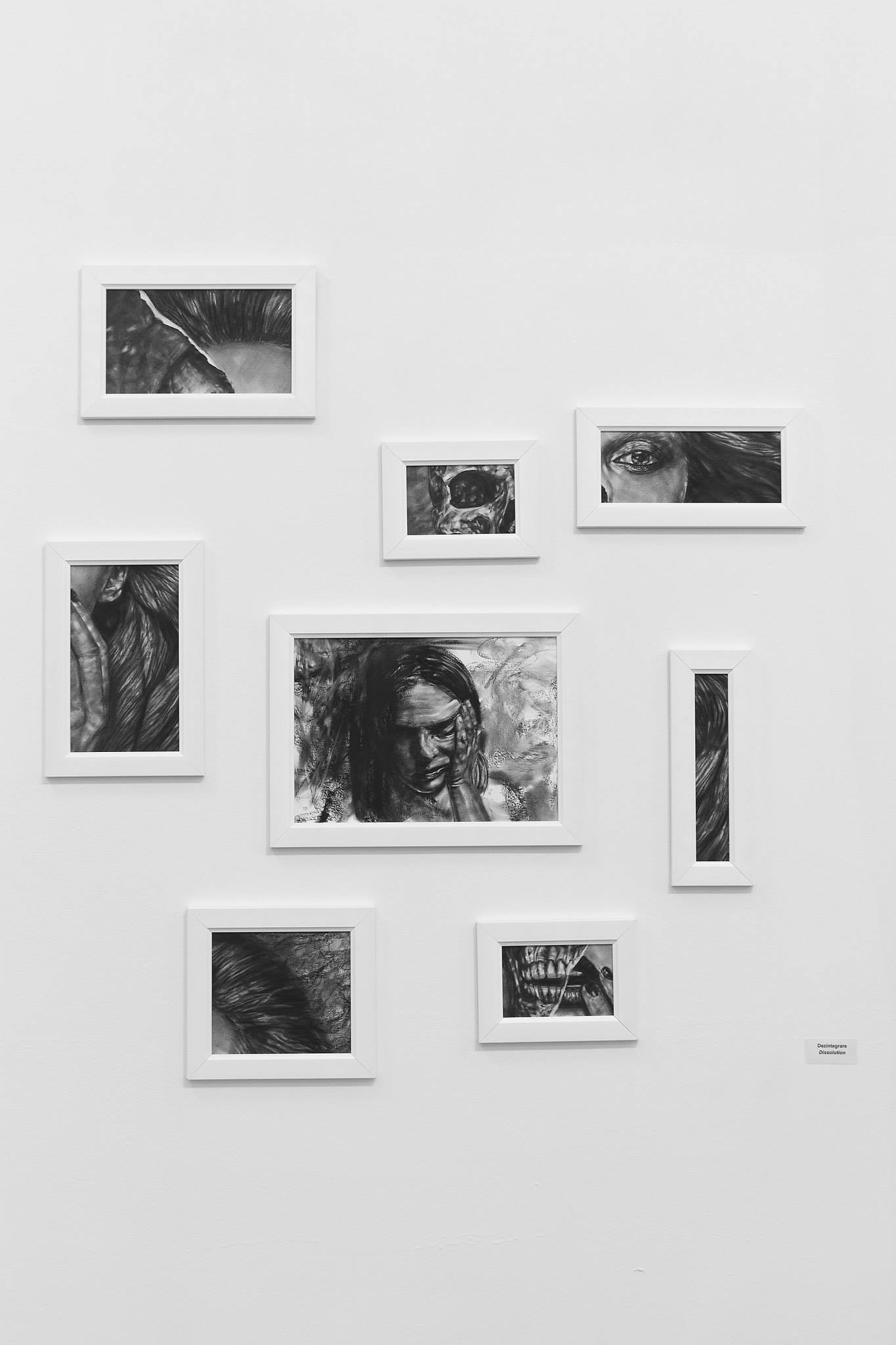 Ada Muntean – solo show Black Fire @ Muzeul de Artă Brasov (44)