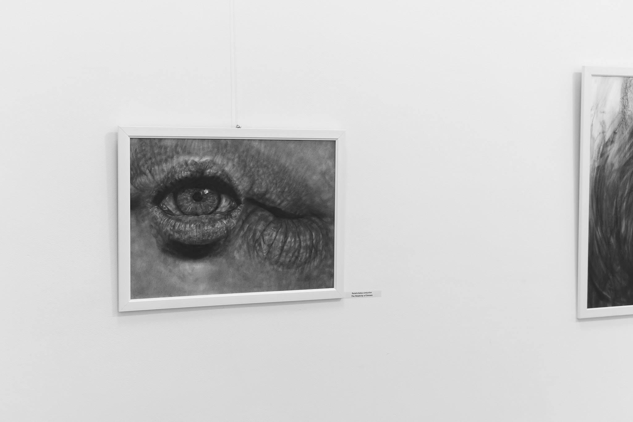 Ada Muntean – solo show Black Fire @ Muzeul de Artă Brasov (54)