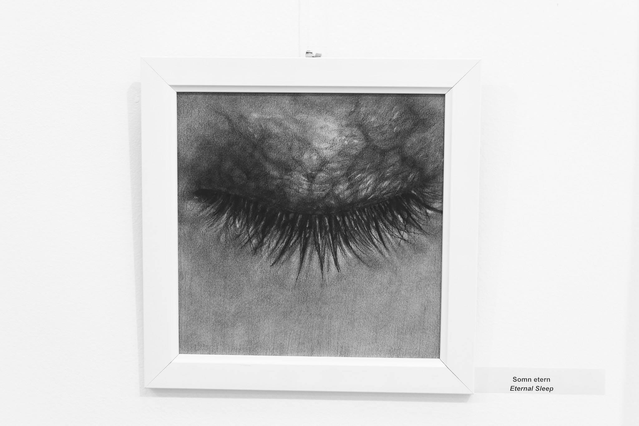 Ada Muntean – solo show Black Fire @ Muzeul de Artă Brasov (55)