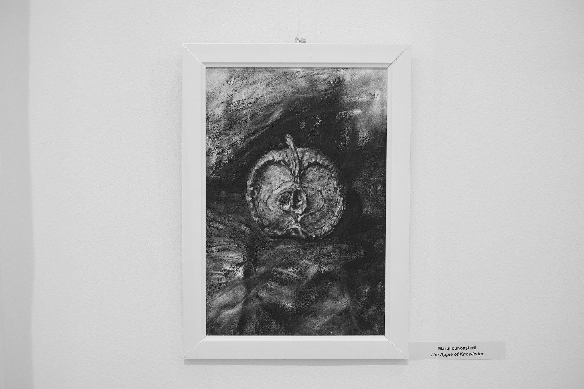 Ada Muntean – solo show Black Fire @ Muzeul de Artă Brasov (58)