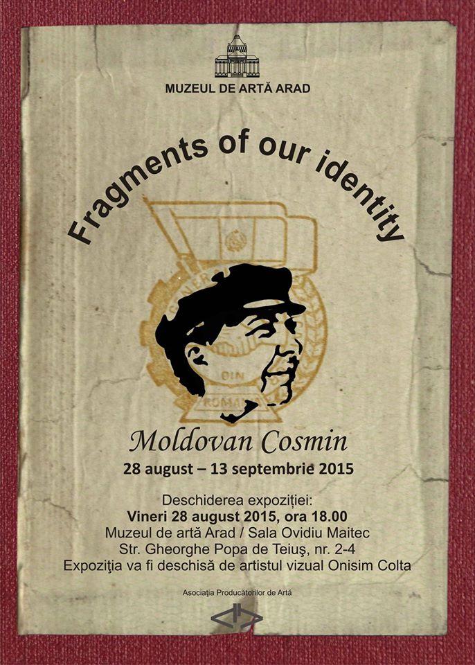 Cosmin Moldovan, Muzeul de Arta Arad