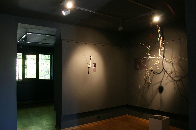 SMARANDA-BOSTAN---fragmente---Galeria-DANA-(1)