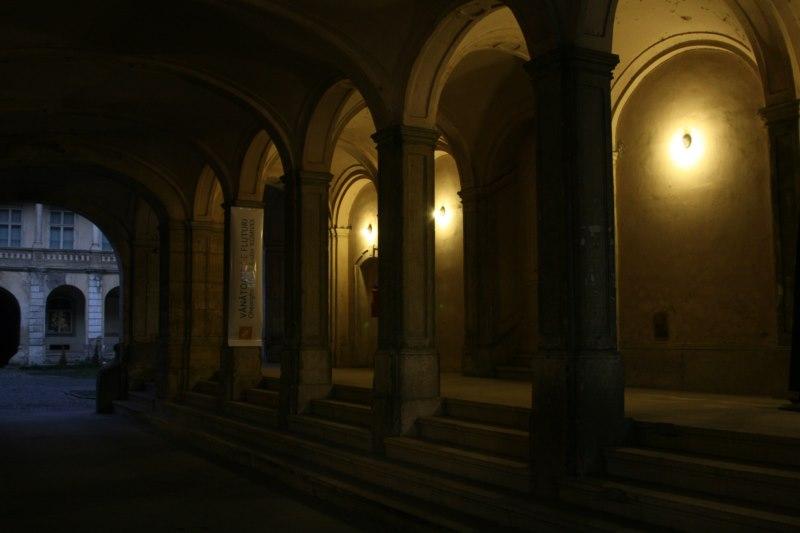 Muzeul de Arta Cluj 02