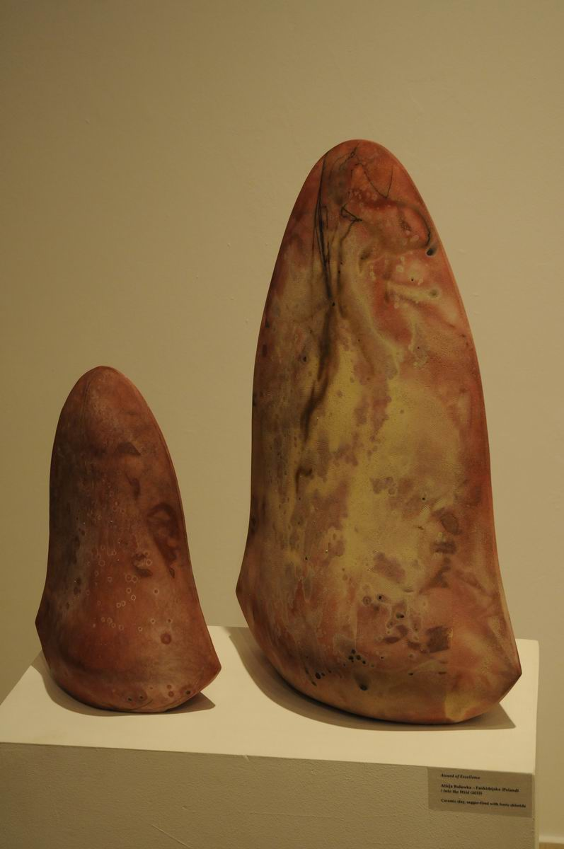 bienala internationala de ceramica cluj - galateea LM_0004