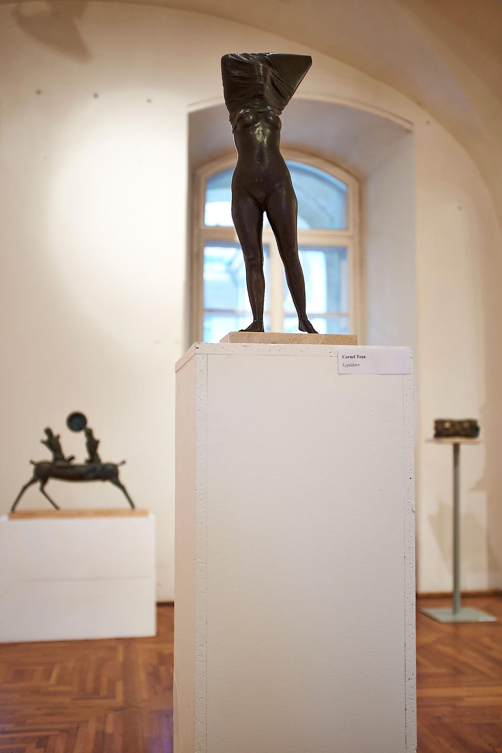 Vârsta de Bronz Muzeul de Arta din Cluj (3)
