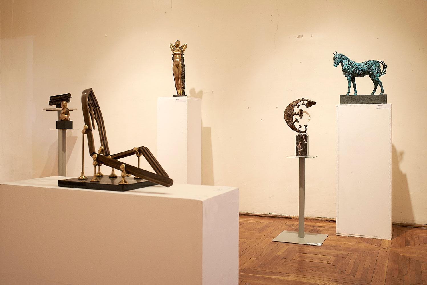 Vârsta de Bronz Muzeul de Arta din Cluj (4)