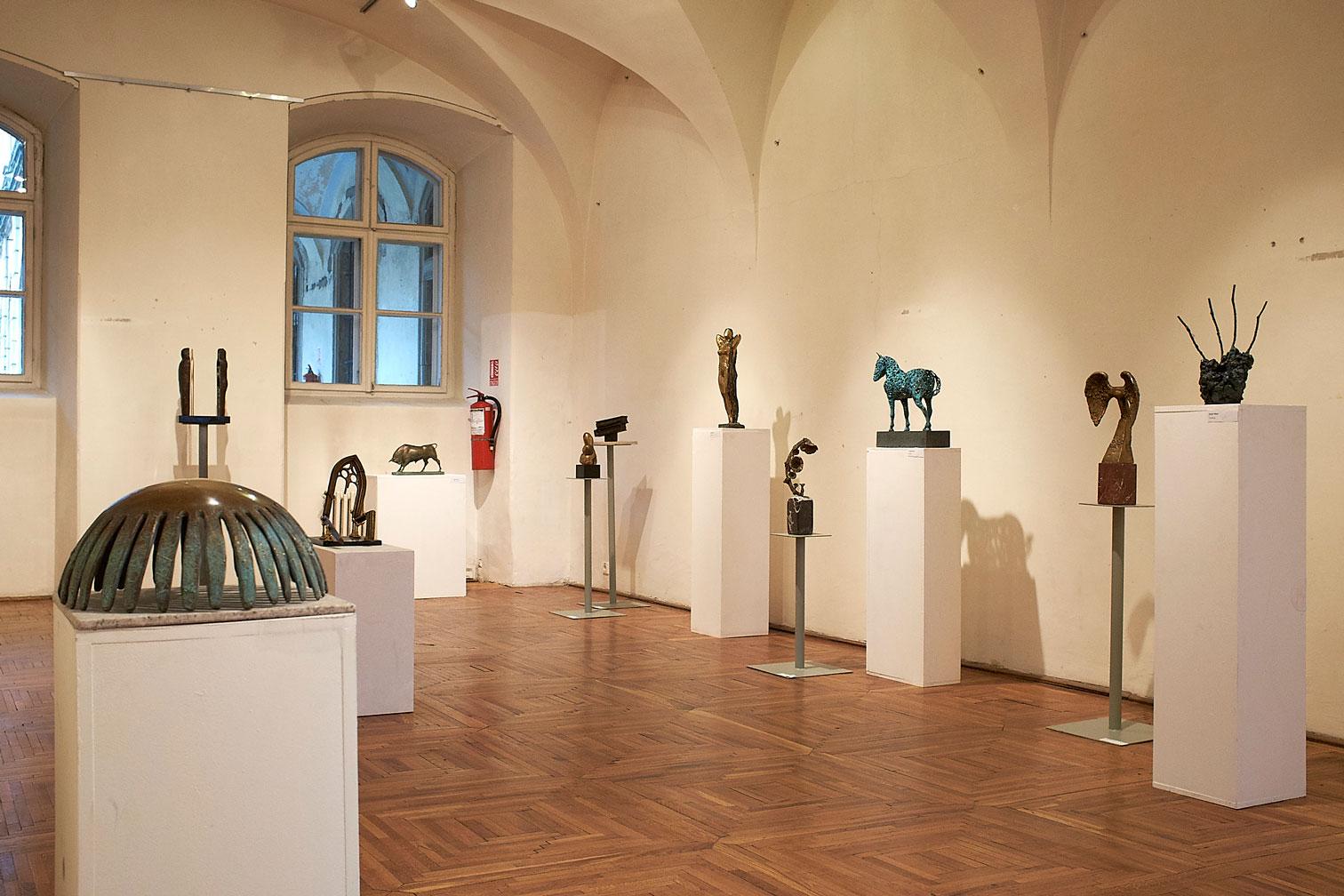 Vârsta de Bronz Muzeul de Arta din Cluj (7)