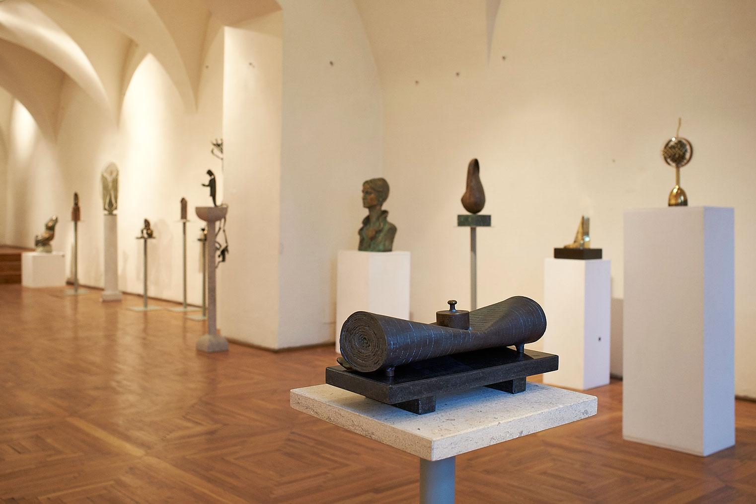 Vârsta de Bronz Muzeul de Arta din Cluj (8)