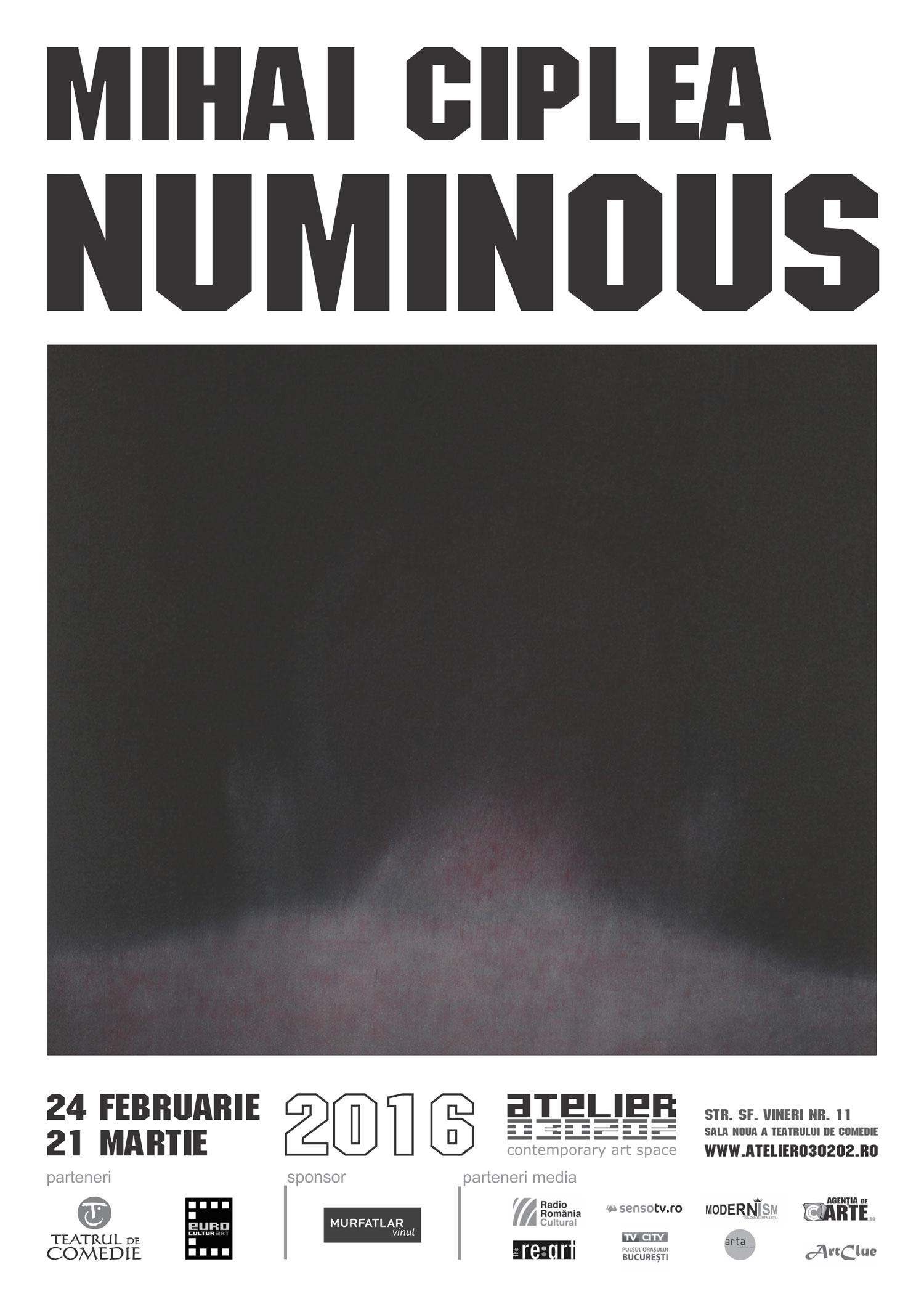 NUMINOUSI-Mihai-Ciplea-web