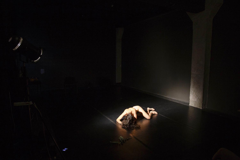 LIKECNDB2016 Nud de femeie brunetă - Andreea David foto Robert Puțeanu