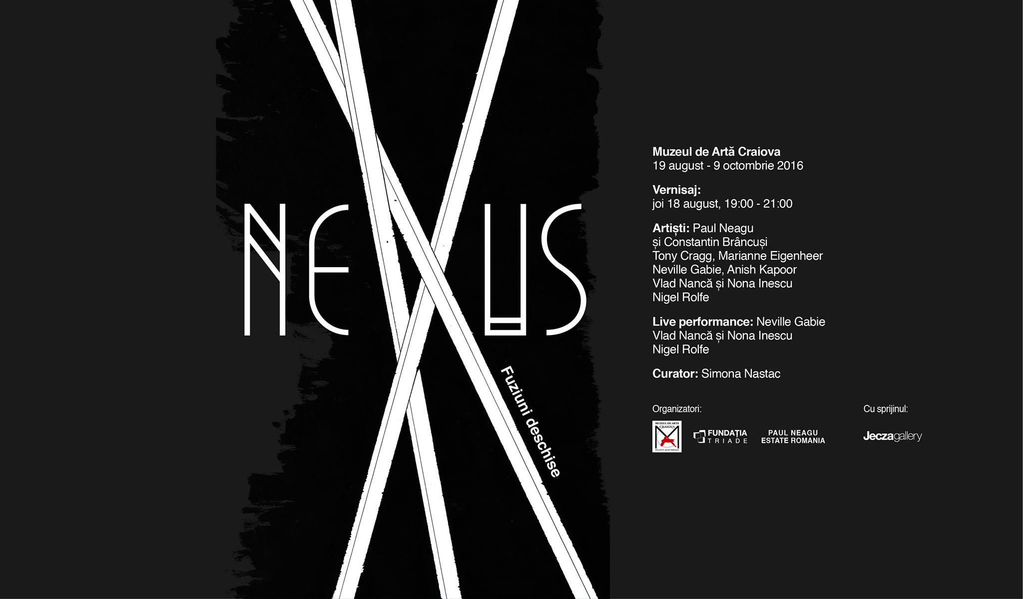 NeXus Fuziuni deschise @ Muzeul de Artă Craiova